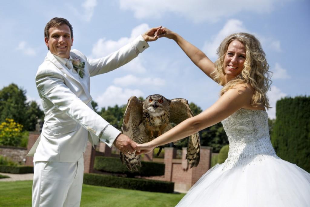 Oehoe vliegt door de armen van het bruidspaar