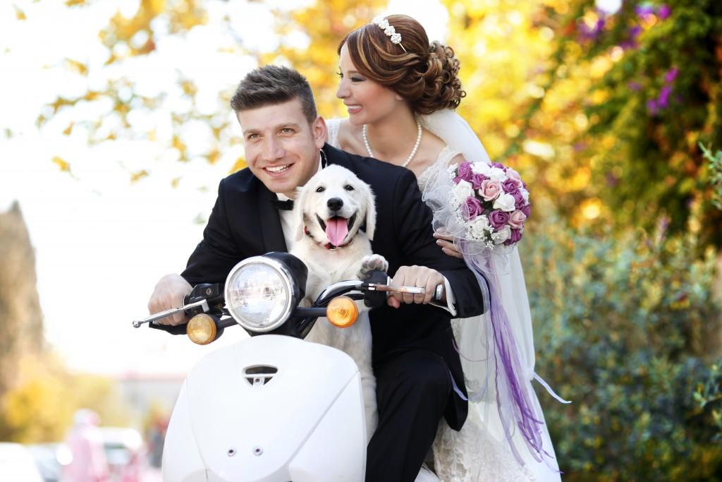 Bruidspaar samen met d ehond op de scooter