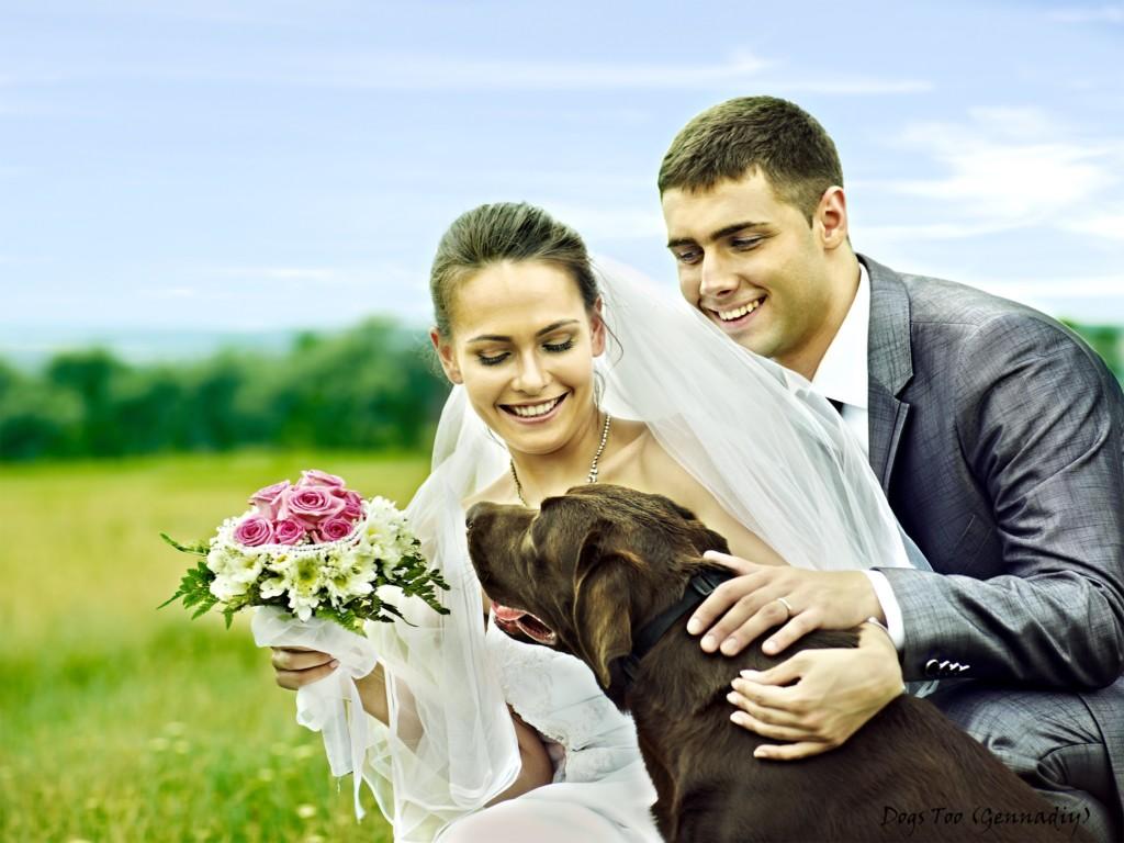 Bruidspaar met labrador