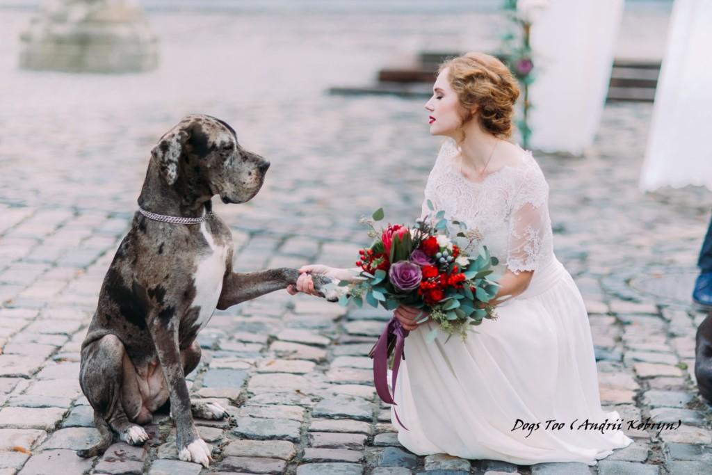 Bruid met hond