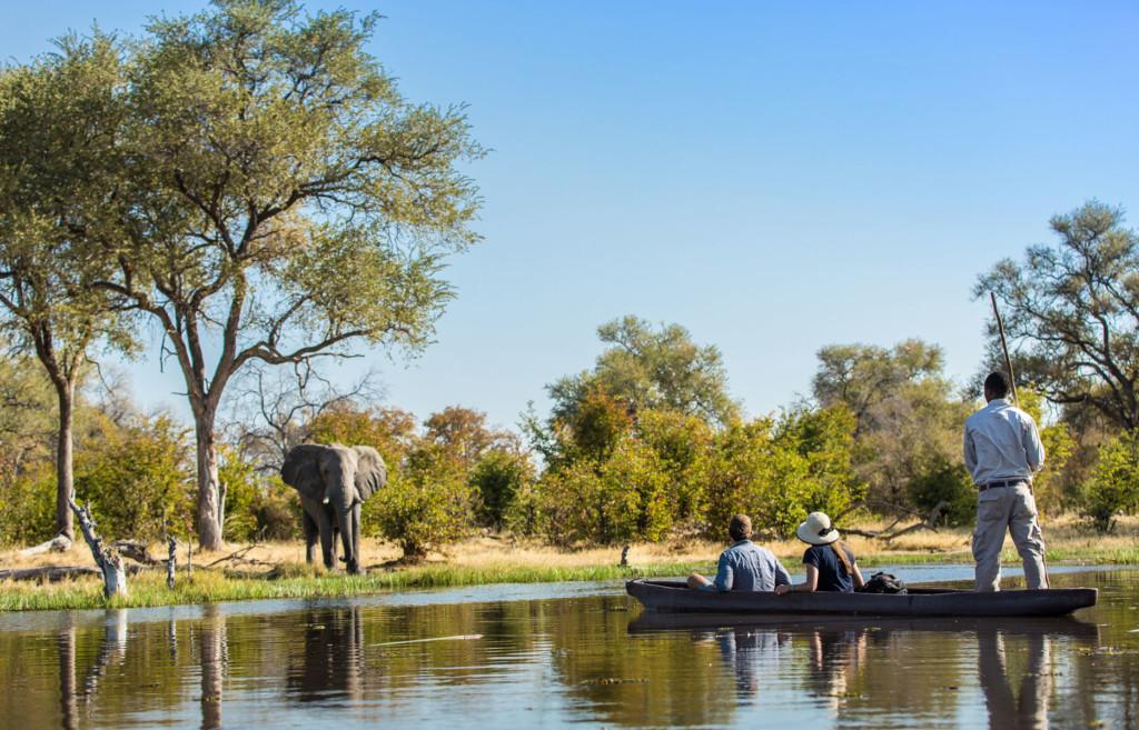 Safari vanaf het water